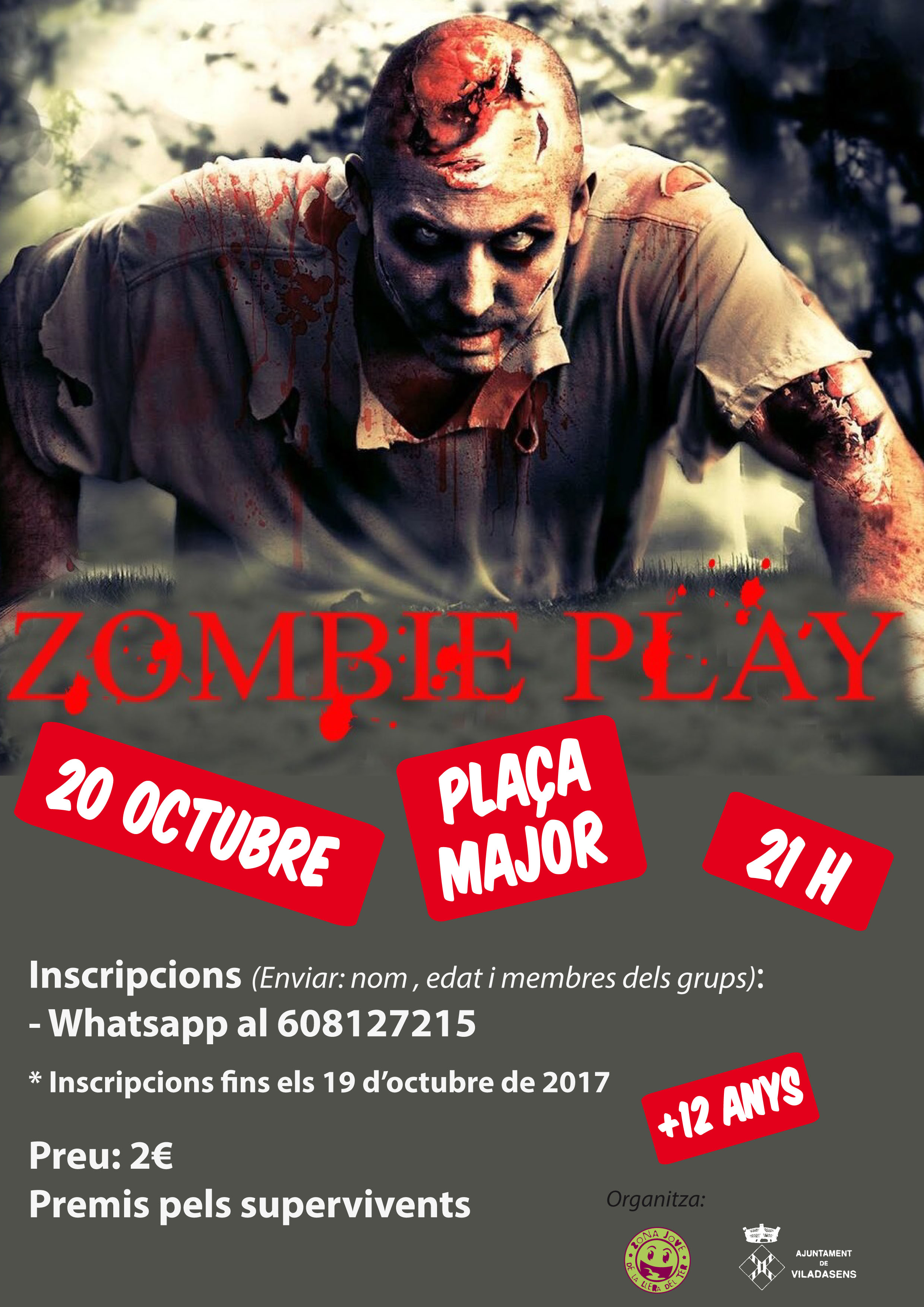 Play Zombies 2017